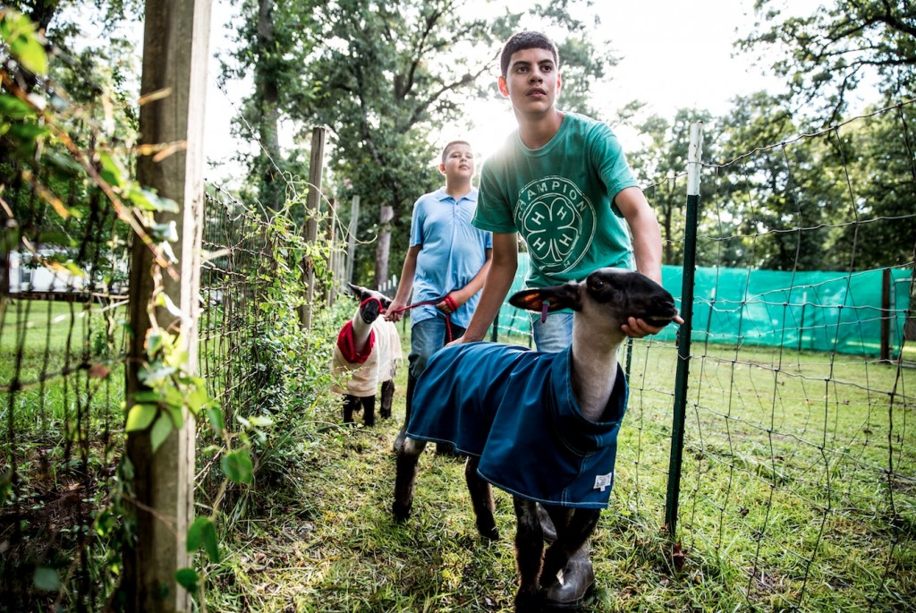 Tractor Supply, 4-H Partner to Provide Thousands of Youth Hands-on Learning Opportunities-media-1