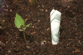 farm-money