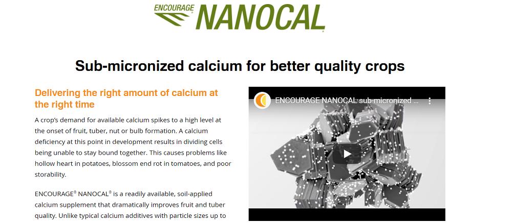 nanocal