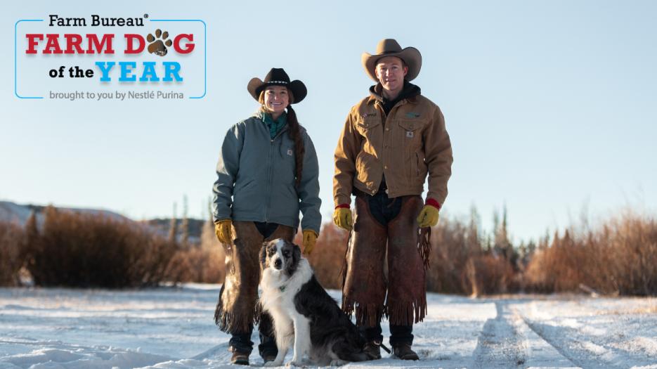 Utah Farm Bureau members Beth and Rhett Crandall with Flint, 2020 Farm Bureau Farm Dog of the Year  Credit: Nestlé Purina