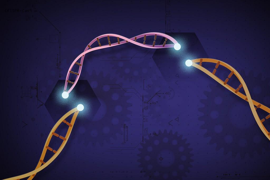 crispr-gene-editing